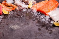 Seafood on the ice. Border top view with empty space for text Royalty Free Stock Photo