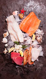 Seafood on the ice. Top view on the brown stone background Stock Image