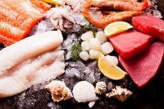 Seafood on the ice. Top view on the brown stone background Stock Photo