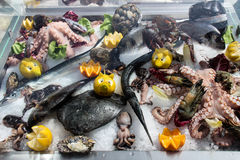 Seafood on ice. Various types of seafood put on ice in a shop Stock Photography