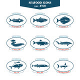 Seafood icons. Fish icons Royalty Free Stock Photos