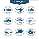Seafood icons. Fish icons Stock Image