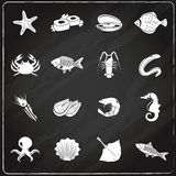Seafood icons set chalkboard Royalty Free Stock Photo