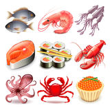 Seafood icons vector set. Seafood icons detailed photo realistic vector set Stock Photos