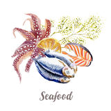 Seafood illustration. Hand drawn watercolor on white background. Stock Photography