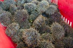Seafood - Kina Stock Images