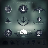 Seafood labels, badges and elements for your Royalty Free Stock Image