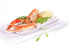 Seafood. Langoustine. Royalty Free Stock Photography