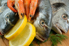 Seafood with lemon and dill Royalty Free Stock Images