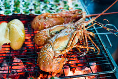 Seafood Lobster barbecue Royalty Free Stock Image
