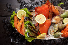 Seafood lobster plater on slate Royalty Free Stock Image