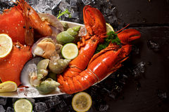 Seafood lobster plater on slate Stock Image