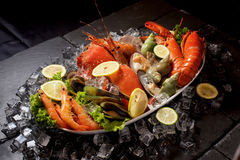 Seafood lobster plater on slate Royalty Free Stock Images