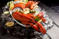 Seafood lobster plater on slate Royalty Free Stock Photography