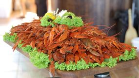 Seafood lobsters. Crabs tentacles on big plate with green salad Royalty Free Stock Images