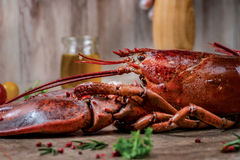 Seafood lobsters. Fresh beautiful large sea lobsters. Delicious Royalty Free Stock Image