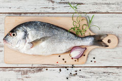 Seafood, luxurious mediterranean style. Stock Image