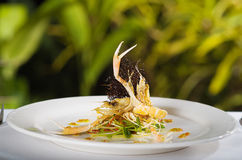 Seafood main course with Scampi Stock Image