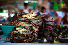Seafood market Stock Images