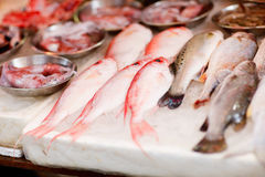 Seafood market Royalty Free Stock Photos