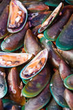Seafood market. For sale on pink plates Stock Photos