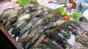 Sea delicacies. Seafood market in Asia stock photos