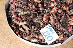 Seafood market in Asia Stock Photo