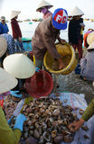 Seafood market on beach Stock Images