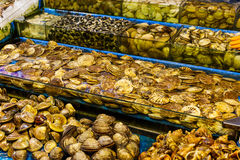 Seafood market fish tank Stock Images