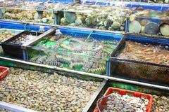 Seafood market fish tank. In Hong Kong Royalty Free Stock Photo