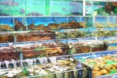 Seafood market fish tank Royalty Free Stock Photography