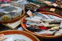 Seafood market Stock Image
