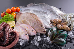 Seafood market, fresh raw material Royalty Free Stock Photos