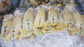 Seafood market/Fresh seafood on ice. Shrimp, crayfish, clams and Royalty Free Stock Photos