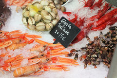 Seafood market Stock Image
