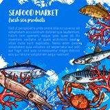 Vector poster for seafood or fish food market. Seafood market products poster sketch. Vector sea fish food of fresh fisher catch squid, tuna or octopus and prawn Royalty Free Stock Photos