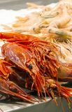 Seafood in a market Stock Photos