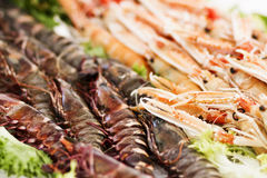 Seafood at market. Seafood display at market in the southern France Stock Image