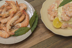 Seafood with mayonnaise. Peeled prawns with mayonnaise Stock Images