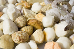 Seafood meatballs Stock Image