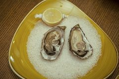 Seafood and Mediterranean cuisine. Oyster with lemon and crushed ice. healthy delicacy with omega 3 vitamin. Dieting and. Health. eating fresh oyster shellfish Stock Photos