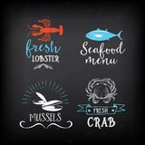 Seafood menu and badges design elements. Stock Image