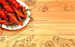 Seafood menu design, centre spread. Hand drawn illustration, lemon, shrimps, fork and knife, dried fish, glass of beer. Boiled red crawfish on a plate with Stock Image