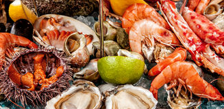 A seafood mix Stock Photo