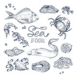 Seafood Monochrome Sketches Set Stock Photography
