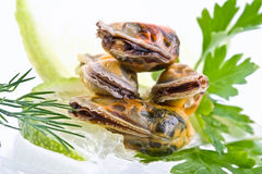 Seafood-mussels Royalty Free Stock Images