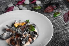 Seafood mussels in cream sauce with lemon and basil on a black chalk board royalty free stock images