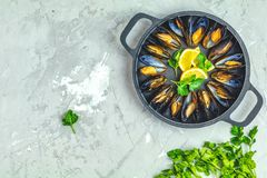 Seafood mussels with lemon and parsley in black metal pan royalty free stock photo
