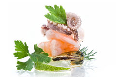 Seafood-mussels,octopus,shrimp Royalty Free Stock Image
