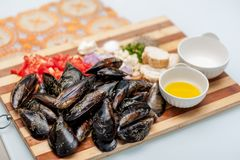 Seafood, mussels, olive oil and tomatoes royalty free stock photos